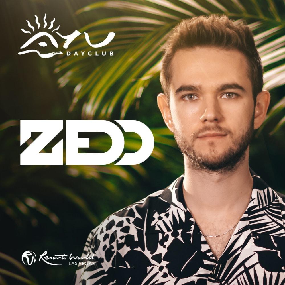 Zedd at AYU dayclub